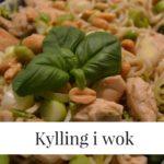 Kylling i wok medgrøntsager og de gode fedtstoffer 1